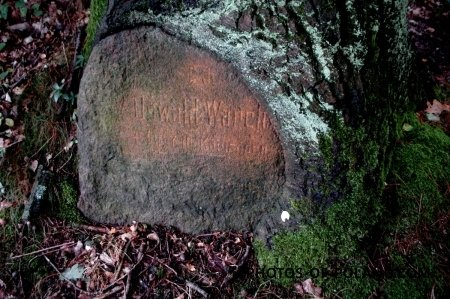Sieniawa Żarska: Pomnik
