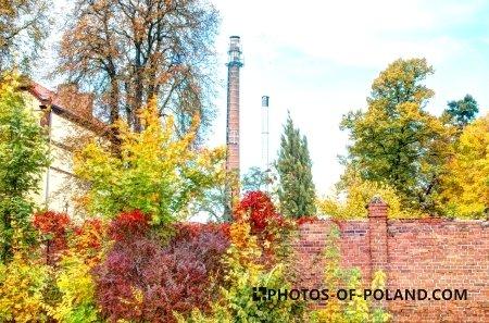 Autumn in Żary