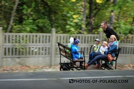Loko-Piknik w Żaganiu