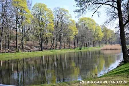Luisa valley in Zielona Gora  in the spring